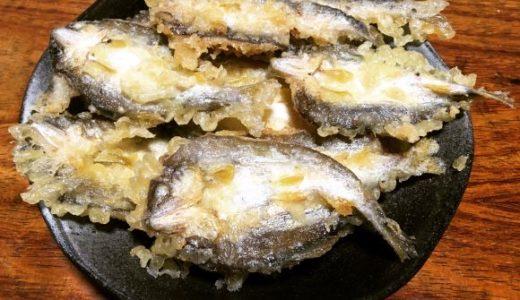 【鮎のおすすめレシピ】鮎がたくさん釣れたら天ぷらが美味しいですよ♪