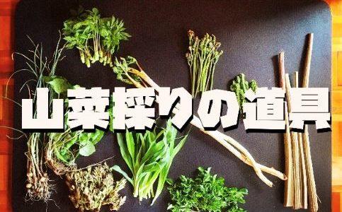 【初心者】山菜採りで必要な道具。出発前に準備しておきたいアイテムを紹介。