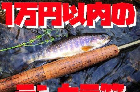 【低価格】1万円以内で買えるテンカラ竿。コスパが良い竿は初心者やサブロッドにおすすめです。