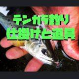 テンカラ釣りの仕掛けと道具