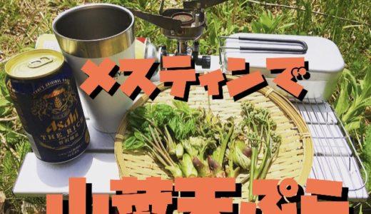 【鮮度抜群】メスティンで採りたて山菜をその場で激ウマ天ぷらに。ビールのつまみに『最高かよ』以外の言葉が見つかりませんでした。