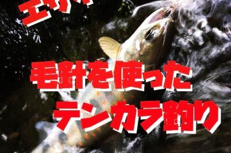【初心者】気持ち悪いエサを触らず簡単に川釣りができるテンカラ釣りの方法+道具について解説します。