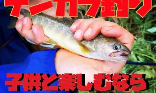 【川遊び】子供と釣りを楽しむなら毛針を使ったテンカラ釣りが最高。おすすめの理由を解説します。