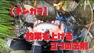 釣果を上げる3つの法則