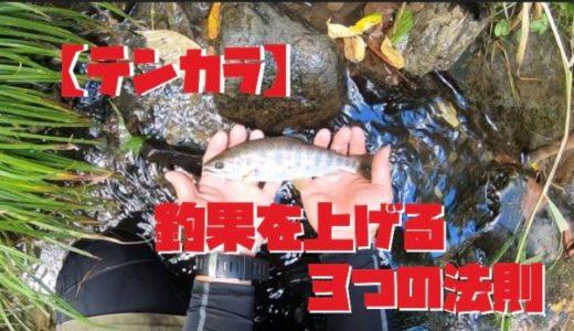 【テンカラ】釣果を上げる3つの法則をわかりやすく解説します