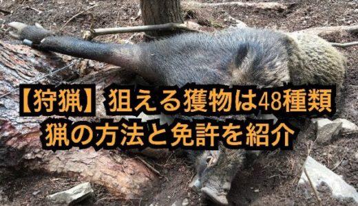 【狩猟】日本で狩れる獲物は48種。4つの猟法と狩猟免許や狙える獲物を紹介します。