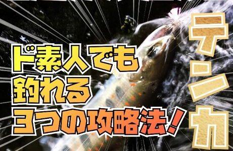 【初心者】ド素人でも簡単に釣れるテンカラ釣り3つの攻略法!
