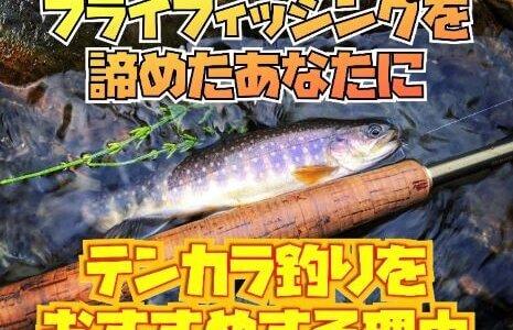 【フライフィッシングを諦めた方へ】毛鉤で楽しむテンカラ釣りをおすすめする理由