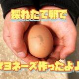 採れたて卵で手作りマヨネーズ|無添加で安心&めちゃウマなのでおすすめです。